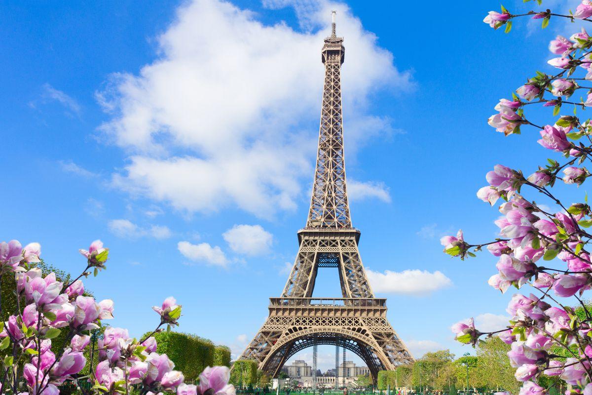 Paris   Book Splendour of Europe at best price