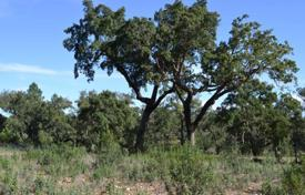Bank repossessions property in Portugal. Plot with olive plantation in Evora, Portugal