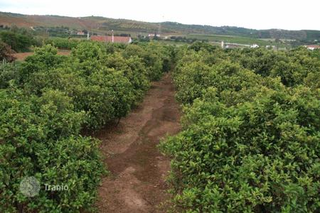Cheap land for sale in Silves. Development land – Silves, Faro, Portugal