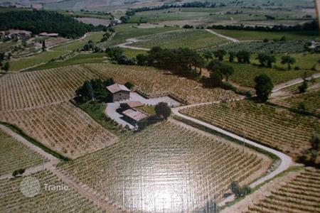 Vineyards for sale in Europe. Vineyard – Montalcino, Tuscany, Italy