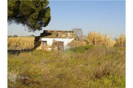 Cheap land for sale in Portugal. Development land - Beja, Portugal