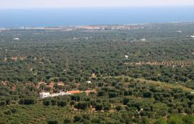 Luxury property for sale in Province of Lecce. Land with ancient olive trees for 117 acres in Preston and Hail, with agricultural plant for processing olives