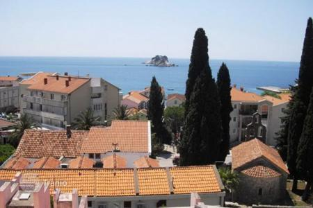 1 bedroom apartments by the sea for sale in Petrovac. Cozy apartment with excellent sea view in Petrovac