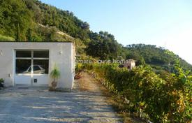 Houses for sale in Vallebona. Villa in Vallebona 170 m²