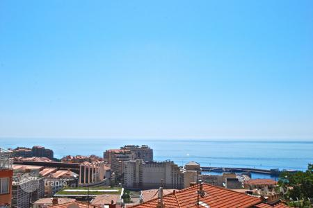 Cheap residential for sale in Cap d'Ail. Superb studio with balcony and panoramic sea view