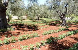Property for sale in Abruzzo. Agricultural land 12700 for rustic villa of 146 square meters