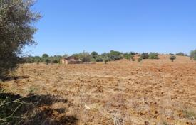 Development land for sale in Algarve. Large Plot of Over 55,000m² with Ruin and Sea Views near Guia