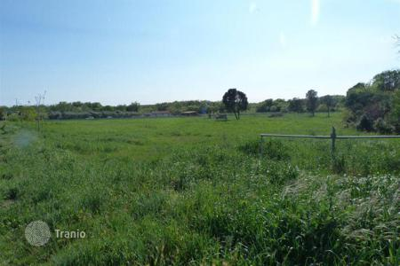 Agricultural land for sale in Istria County. Agricultural - Vodnjan, Istria County, Croatia