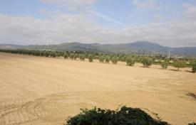 Property for sale in Suvereto. Development land – Suvereto, Tuscany, Italy