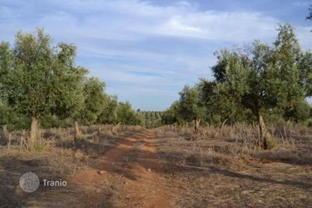 Land for sale in Portalegre District. Plot in Fronteira, Portugal