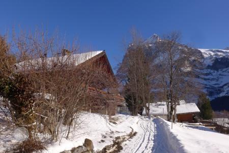 Property to rent in Bern District. Detached house – Grindelwald, Bern District, Switzerland