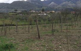 Vineyards for sale in Italy. Vineyard – Lazio, Italy
