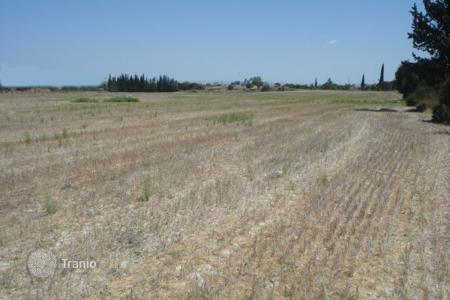 Land for sale in Mazotos. Agricultural Land