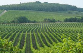 Property for sale in South Moravian Region. Vineyard – Brno, South Moravian Region, Czech Republic