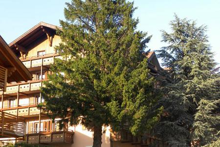 Commercial property for sale in Italian Alps. Hotel – Folgaria, Trentino — Alto Adige, Italy
