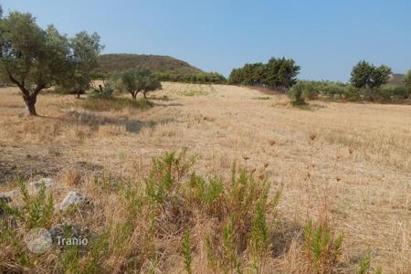 Agricultural land for sale in Pallini. Agricultural – Pallini, Administration of Macedonia and Thrace, Greece