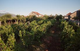 Property for sale in Podgorica. Small vineyard near Moraca river