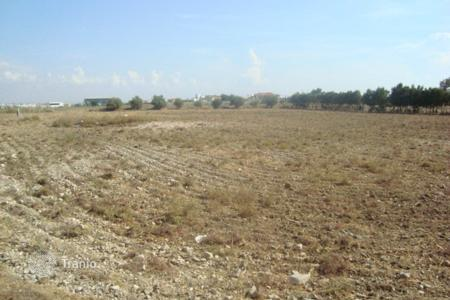 Development land for sale in Agios Theodoros. Agricultural Land