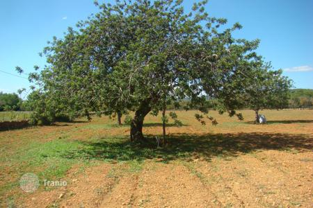 Land for sale in Ibiza. Development land – Cala Llenya, Ibiza, Balearic Islands,  Spain