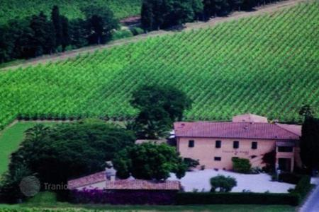 Land for sale in Tuscany. Vineyard - Bolgheri, Tuscany, Italy