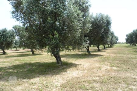 Coastal development land for sale in Italy. Land with approved project of villa, Salve, Italy