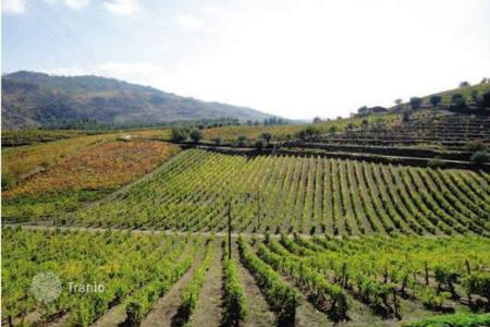 Land for sale in Porto. Winery in Douru, Portugal