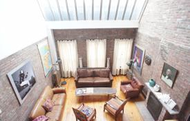 3 bedroom villas and houses to rent in State of New York. 18'Ceiling, Very, Very Special Apt. Exceptional natural light! Huge skylight!