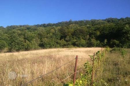 Cheap land for sale in Georgia. Development land – Kakheti, Georgia