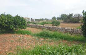 Agricultural land for sale in Valencia. Agricultural – Denia, Valencia, Spain
