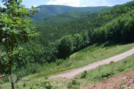 Land for sale in Svoge. Agricultural - Svoge, Sofia region, Bulgaria