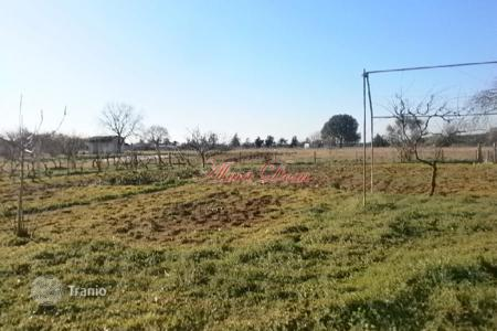 Land for sale in Vodnjan. Building land Lot with a small cottage