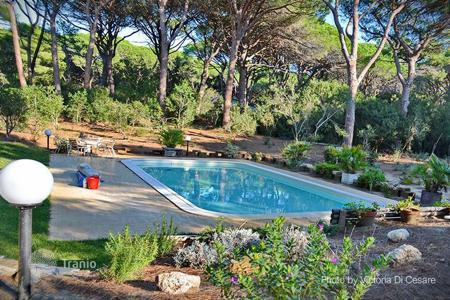 Villas and houses for rent with swimming pools in Tuscany. Villa – Roccamare, Tuscany, Italy