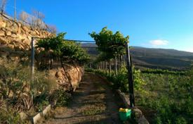 Two-storey cottage with vineyards and an olive grove, Fasnia, Spain for 170,000 €
