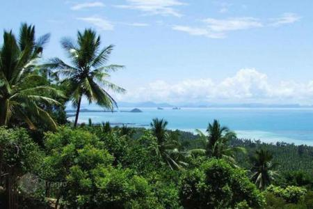 Land for sale in Southeast Asia. Plot with amazing sea views in the area of Bang Bang Makham