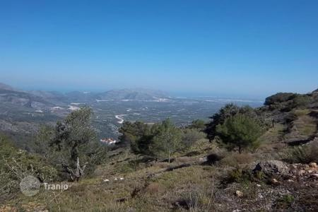 Agricultural land for sale in Alicante. Agricultural – Alicante, Valencia, Spain
