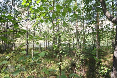 Cheap property for sale in Imatra. Beautiful plot with its own coast line of the lake near the town of Imatra, Finland