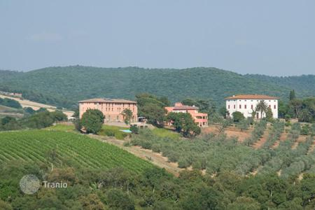 Vineyards for sale in Europe. Vineyard – Massa Marittima, Tuscany, Italy
