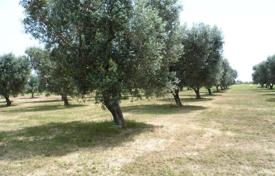 Coastal property for sale in Salve. Land with approved project of villa, Salve, Italy