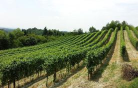 Vineyards for sale in Italy. BUILDINGS: Rural complex with the need for restructuring
