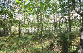Cheap property for sale in Imatra. Beautiful plot with its own coast line near the town of Imatra, Finland