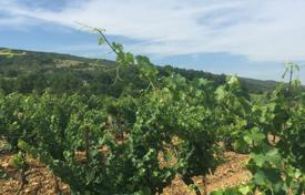 Property for sale in Aude. Plot with vineyards, near Toulouse and La Cite in Carcassonne, Aude, France