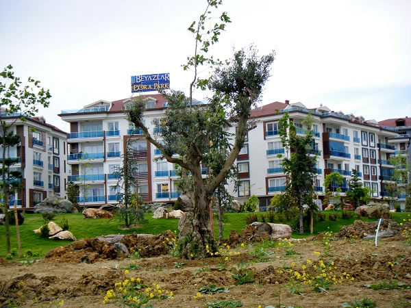 There are many newly built properties in Beylikdüzü